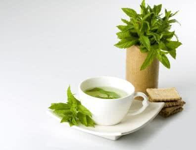 Benefícios do chá verde emagrecem e muito mais!