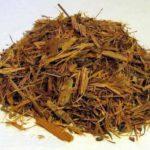 Propriedades e efeitos do chá de catuaba