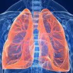 Chás para os pulmões