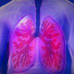 Chá verde: uma xícara ao dia auxilia no combate ao câncer de pulmão
