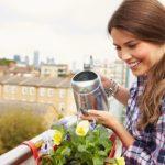Aprenda a fazer um chá de compostagem