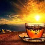 Emagreça tomando o chamado chá do sol