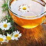 Consumir chá de camomila em excesso faz mal para a saúde?