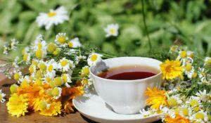 Cup of herbal tea with chamomile and calendula flowers