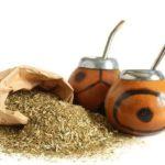 Tomar mais chá mate pode ser ainda mais benéfico