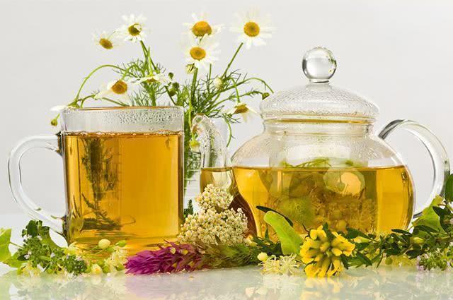 Ervas para chás que acabam com a dor de cabeça – Bom Jardim Notícias