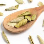 Alivie sintomas da azia com chá de boldo brasileiro